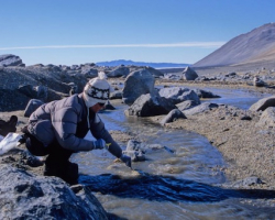 McMurdo Stream Team