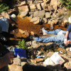 Increase in metal concentrations in Rocky Mountain watershed tied to warming temperatures