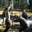 Installing a piezometer to measure groundwater head...