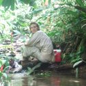 Collecting epilithon in Trinidad, West Indies.
