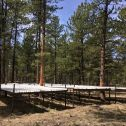 Drought treatment plot at Manitou Experimental Forest.