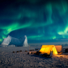 Arctic Arts photographers awarded 6 medals at Arctic Biodiversity Congress