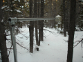 A snow depth sensor installed at our Niwot Ridge site near C1.