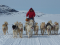 Irina Overeem (http://instaar.colorado.edu/people/irina-overeem/) uses a dogsled to get to a river gauging station in #Greenland #GirlsWithToys