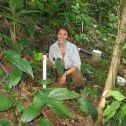 Costa Rica Hillslope